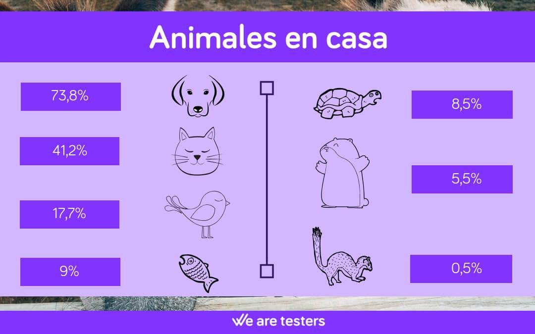 animales de casa